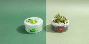 کاشتن گل و گیاه در ظروف محصولات شون